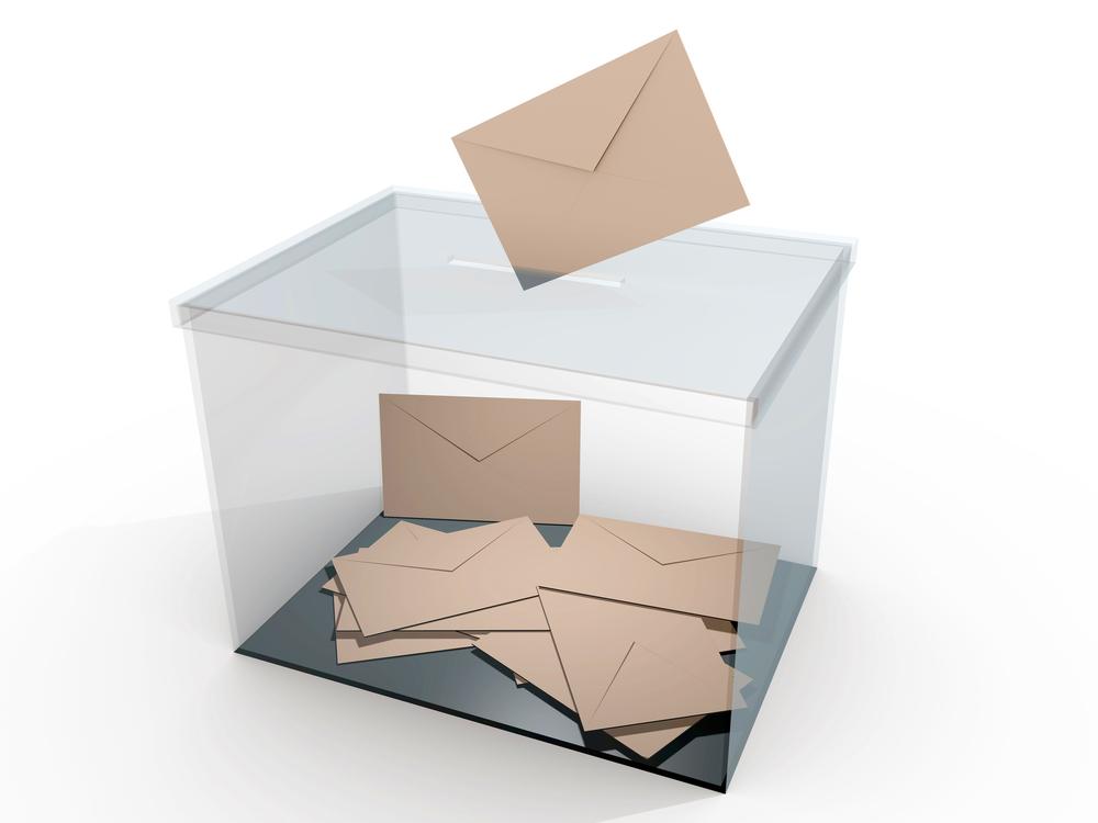 Image result for urna electoral