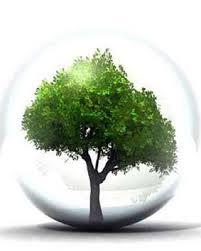 ambiental-1